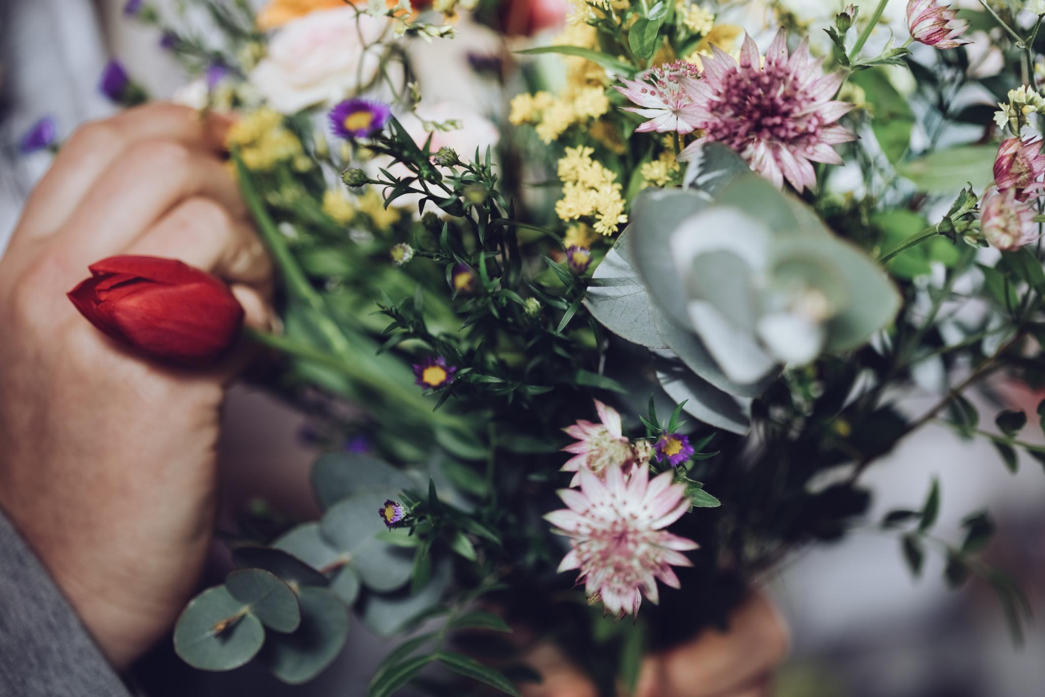 Como Florir a Casa